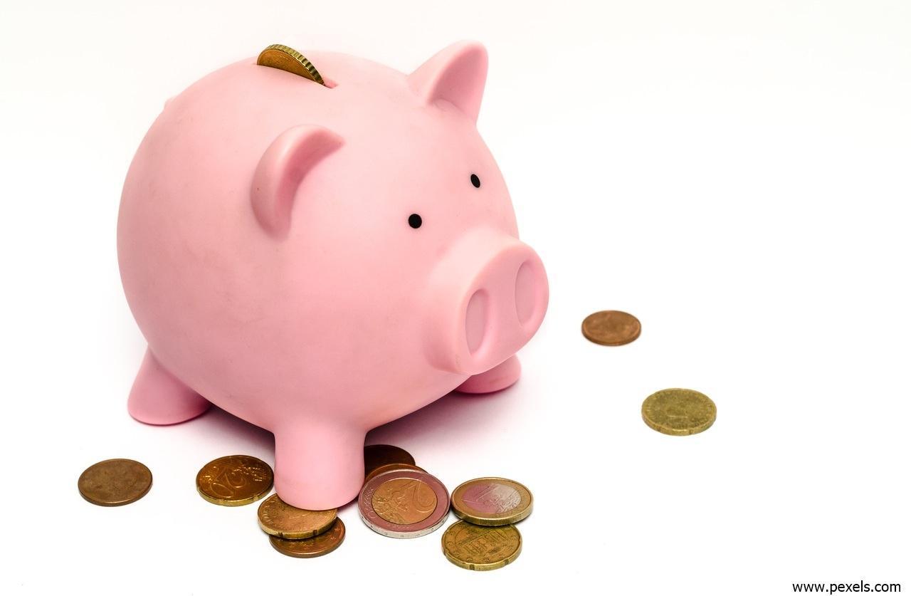 Non-Profit-Organisation Profit - Sparschwein