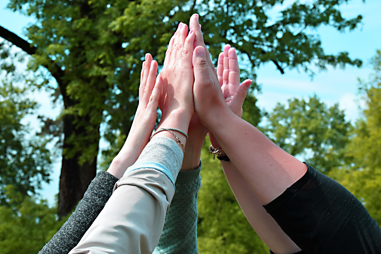 Mehrere Hände klatschen in der Luft zusammen.