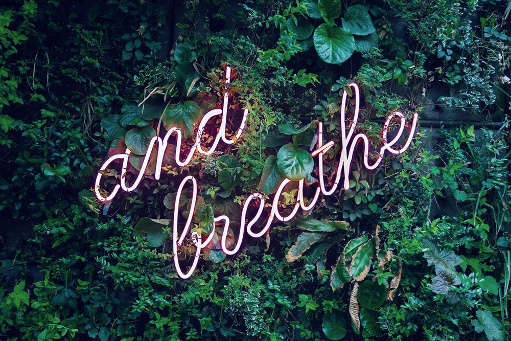 09_Bild für Blogbeitrag Chiara Stephan